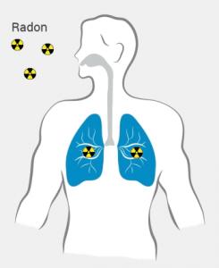 Le Radon et ses descendants radioactifs irradient vos poumons